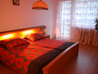Apartment in the center of Teplice - Teplice vacation rentals