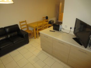 UNIVERSITY LODGE APARTMENTS ~ QUEENS QUARTER - Belfast vacation rentals