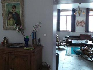 Rez de jardin de Standing 110 m2 - Saint Omer vacation rentals