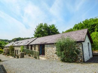 BUZZARD COTTAGE, all ground floor, hilltop views, pet-friendly, Llandysul, Ref - Llandysul vacation rentals
