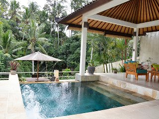 Villa Cenik-  private, secluded, magnificent views - Ubud vacation rentals