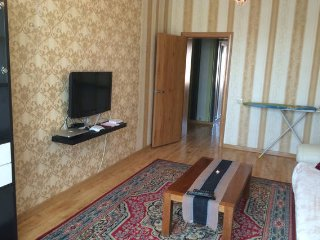 City Apt 1 bed near State Dep Store along main rd - Ulaanbaatar vacation rentals