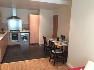 Modern 2 Bedroom Apt in North Dublin City Centre - Dublin vacation rentals