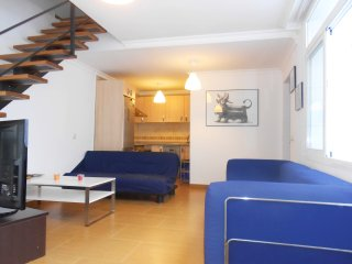 The Cris´s house with terrace (historical center) - Malaga vacation rentals