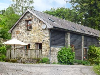 TRACTOR SHED, wood-fired hot tub, pet-friendly, barn conversion, Knighton, Ref 12175 - Knighton vacation rentals