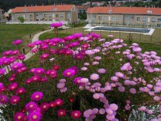 Exclusive Apartment Santiago de Compostela - Corunna vacation rentals