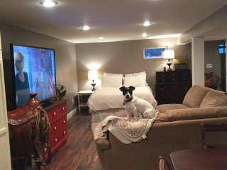 Awesome studio apartment in the heart of west STL - Ellisville vacation rentals