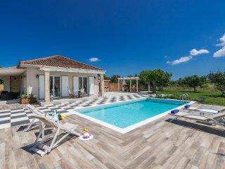 Villa Vigneto - private villa with pool & Jacuzzi. - Tsilivi vacation rentals