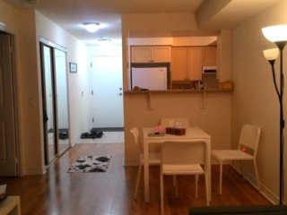 Fully Furnished Short Term 1 Bedroom - Toronto vacation rentals