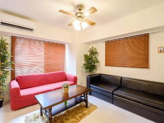 New Apartment of 50㎡ in ASAKUSA - Taito vacation rentals