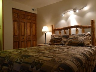 1 bedroom House with Shared Outdoor Pool in Crested Butte - Crested Butte vacation rentals