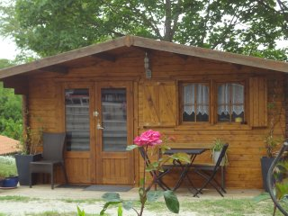 Nice Chalet with Internet Access and Housekeeping Included - Arzens vacation rentals
