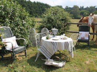 Romantic 1 bedroom Bed and Breakfast in Tournan-en-Brie - Tournan-en-Brie vacation rentals
