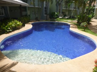 Two Bedroom Condo in Paradise - Tamarindo vacation rentals