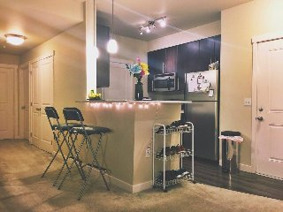 Nice Condo with Washing Machine and Water Views - Bothell vacation rentals