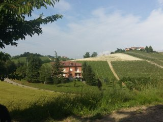 Cozy 2 bedroom House in Monforte d'Alba with Internet Access - Monforte d'Alba vacation rentals