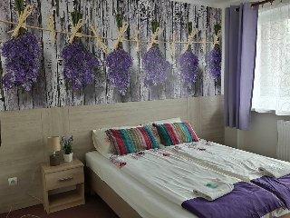 PENSJONACIK JEZIORAK  - Guest House Iława - Ilawa vacation rentals