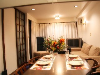 Nice House with Internet Access and A/C - Chuo vacation rentals