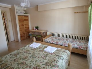 1 bedroom Private room with Internet Access in Zakopane - Zakopane vacation rentals