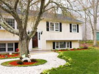Wonderful House with Internet Access and A/C - Centerville vacation rentals