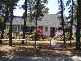 4 Bedroom Cape with Swimming Pool - Dennis vacation rentals