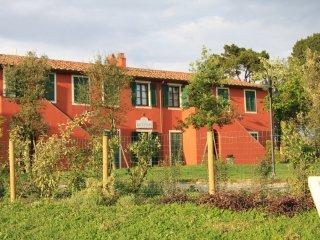 Podere le Rane felici - Ortensie - Fauglia vacation rentals