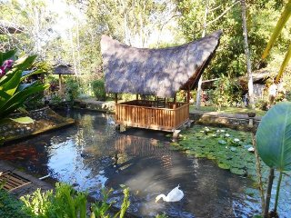 Mi Casa guest house, wooden house in the green - Banyuwangi vacation rentals