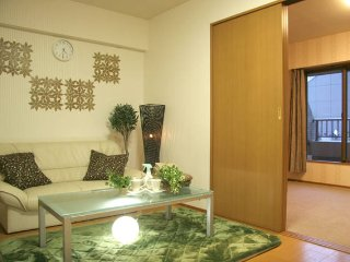 Good location Shinjuku area room!Big room is here! - Shinjuku vacation rentals