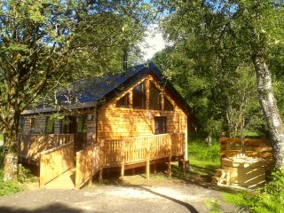 Bluebell Cabin, with hot tub - Dalavich vacation rentals