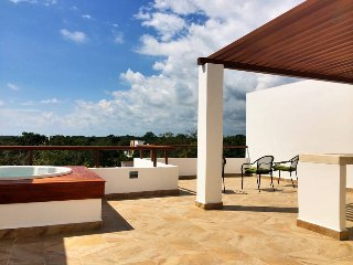 Amazing Penthouse with Private Rooftop & Beach Club - Akumal vacation rentals