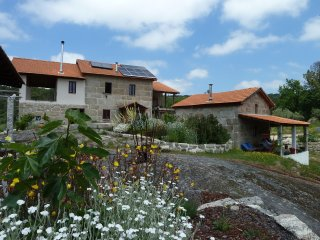 Cozy Cottage with Internet Access and Children's Pool - Lagares da Beira vacation rentals