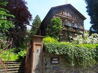 Casa Stolte -  Apartment in Moselvilla von 1854 - Traben-Trarbach vacation rentals
