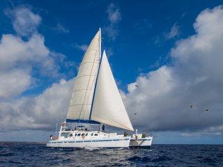 Nice 8 bedroom Puerto Ayora Yacht with A/C - Puerto Ayora vacation rentals