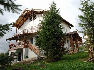 Perfect House with Internet Access and Central Heating - Paltinis vacation rentals