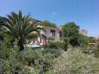 maison avec jardin dans village typique corse - Feliceto vacation rentals