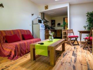 location gite F2 avec extérieur - Poussan vacation rentals