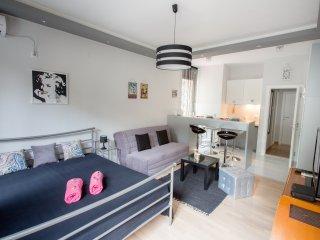 Lea Studio - Promo! Brand New! Center, clean,quiet - Belgrade vacation rentals