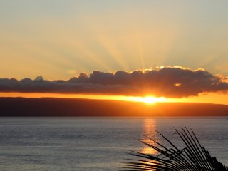 Maui Oceanview Studio,  Wi-fi, Parking, A/C -RK505 - Lahaina vacation rentals