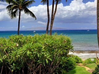 Renovated Beachfront Ocean View - Kihei vacation rentals
