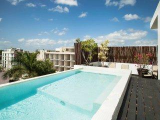 LFT - 1bd Apartment w/ Jacuzzi and Private Terrace - Playa del Carmen vacation rentals