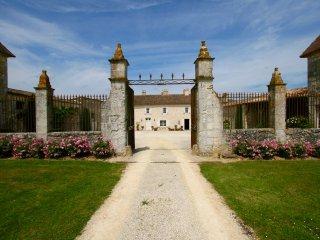 Chateau des Egrons - Aquitaine/Dordogne - Duras vacation rentals