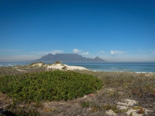 2 bedroom Apartment with Internet Access in Cape Town - Cape Town vacation rentals