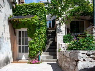 House Tea - Traditional Dalmatian stone house - Pucisce vacation rentals