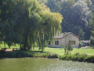 Gite au pied du vercors avec étang pour la pêche - Chatuzange-le-Goubet vacation rentals