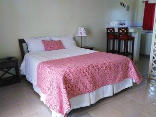 Azul Bravio Hotel - Cabrera vacation rentals