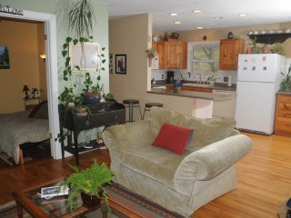A Beautiful downtown cottage getaway - Weaverville vacation rentals