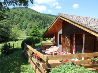 chalet indépendant 4 pers, 2 chambres - Le Thillot vacation rentals