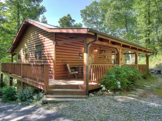 Beautiful Cabin with Internet Access and A/C - Cosby vacation rentals