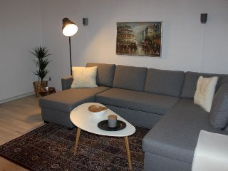 Lovely large bright Copenhagen apartment near parks - Copenhagen vacation rentals
