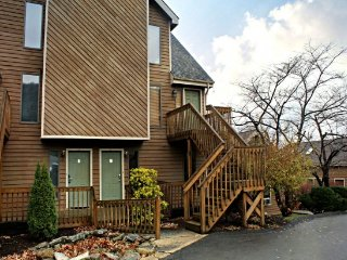 Hartwood Village-Lake Front! - McHenry vacation rentals